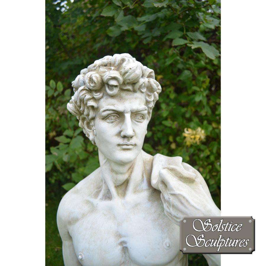 Michelangelo's David Statue close up