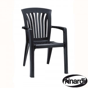 Diana chair in Anthracite