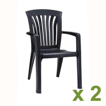 Diana Chair in Anthracite 2 pack