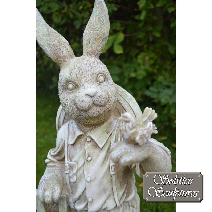 Mr Rabbit close up