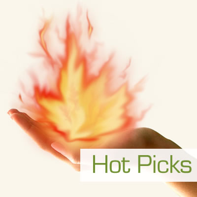 2017 Hot Picks